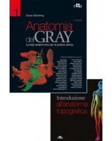 Anatomia del Gray. Le basi...