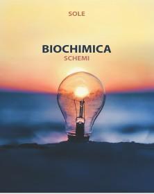 Sole - Biochimica
