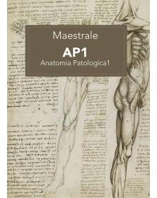 Maestrale - Anatomia...